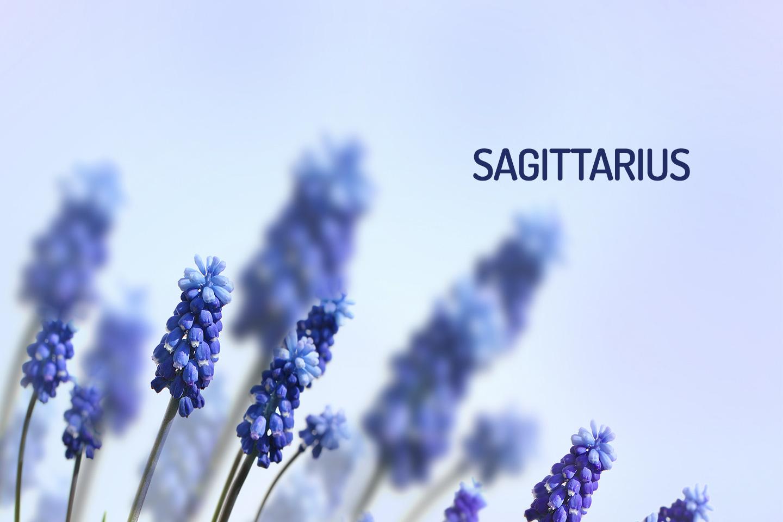 Sagittarius Horoscope For May 2018 - Wemystic-2172