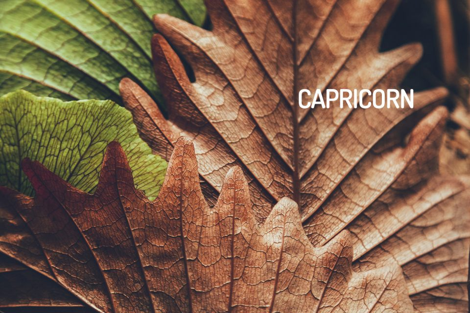 Capricorn Horoscope for October 2018 - WeMystic