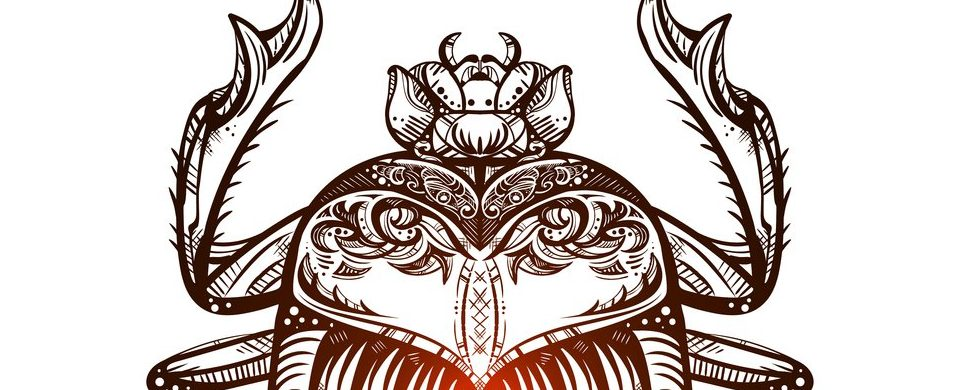 Escarabajo Egipcio Los Poderes De Este Milenario Amuleto Wemystic