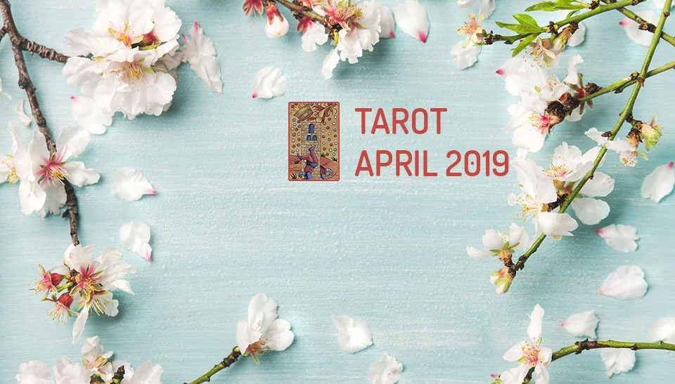 cancer tarot card reading january 2020